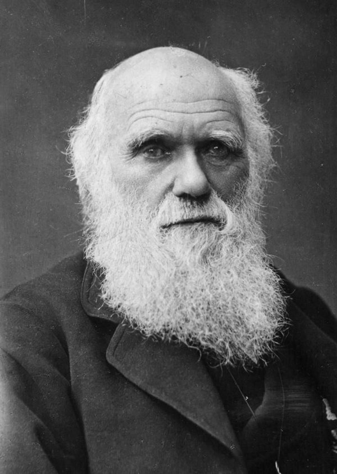 Los manuscritos originales del naturalista británico Charles Darwin ya están disponibles. Foto EDH