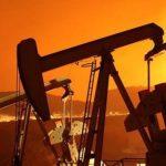 Tras decisión de la OPEP, el petróleo cayó a su precio más bajo en los últimos cuatro años
