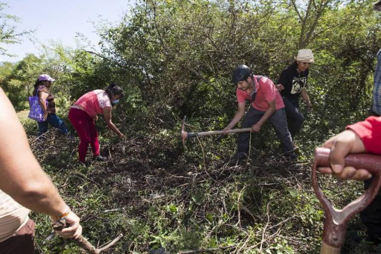 Familiares de los 43 desaparecidos buscan tumbas clandestinas. foto edh / ap.
