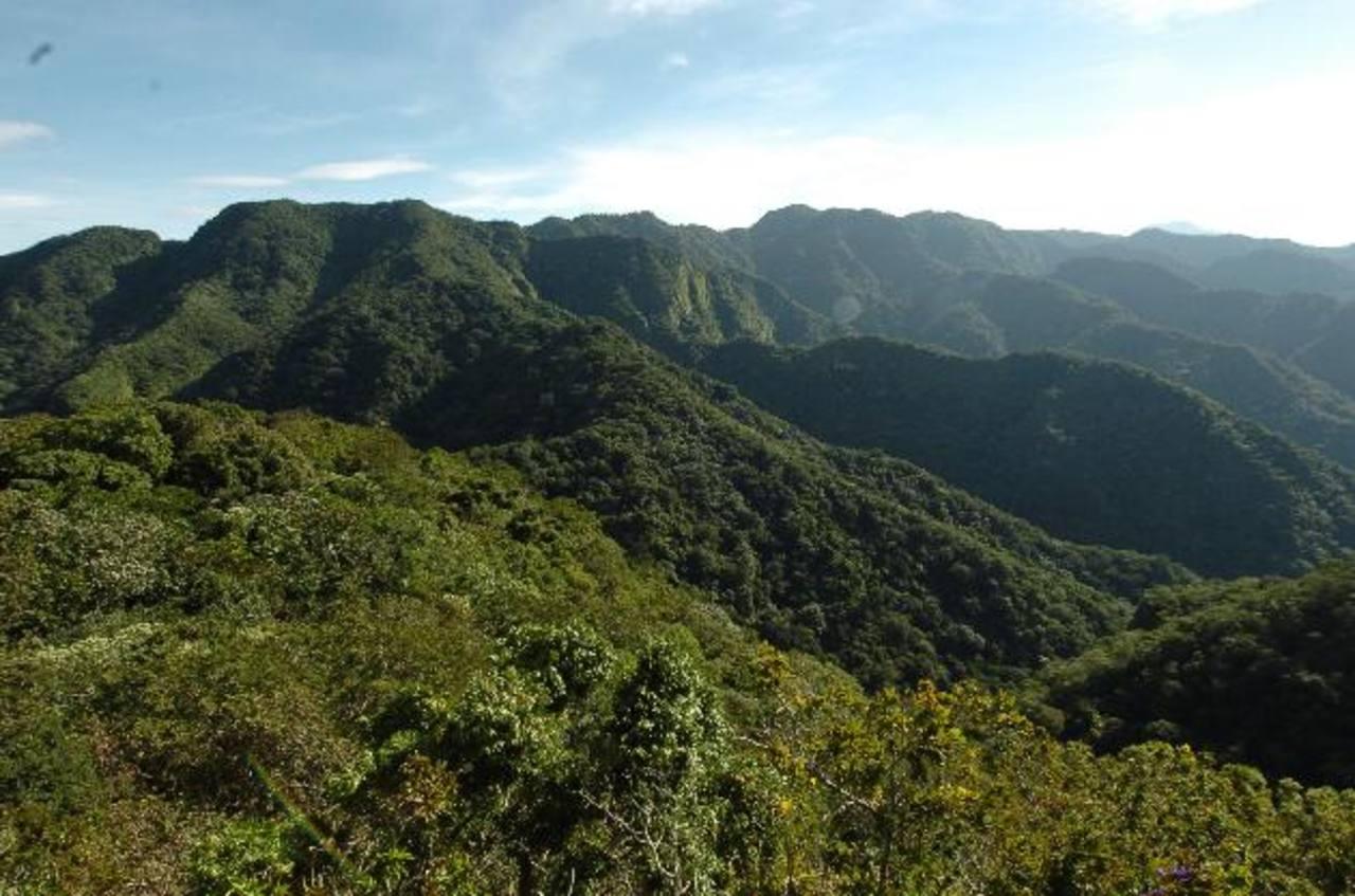 Panorámica del parque nacional El Imposible, ubicado entre los municipios de San Francisco Menéndez y Tacuba, en el departamento de Ahuachapán. Foto EDH A la izquierda se muestra una vista del volcán de Izalco, que forma parte del parque nacional Los