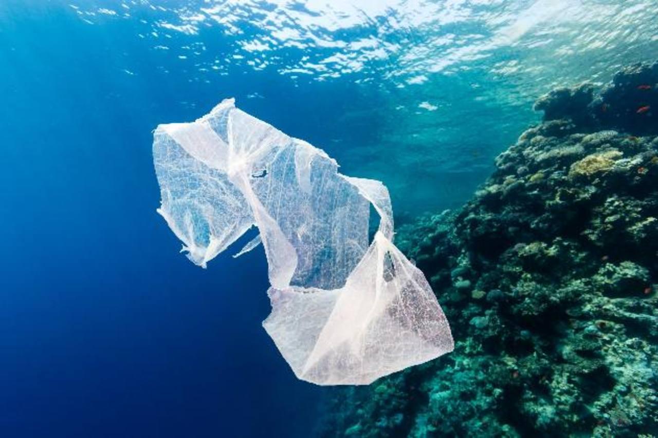 Las piezas mayores de 20 centímetros (8 pulgadas) representan tres cuartas partes del plástico que los científicos calculan que está en el océano. FOTOs EDH