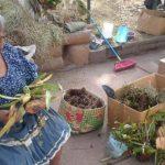 Doña Rosa Amaya elabora los adornos con orquídeas en el Parque Bolívar.