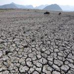 Conforme al uso, la tierra va perdiendo nutrientes. Foto edh