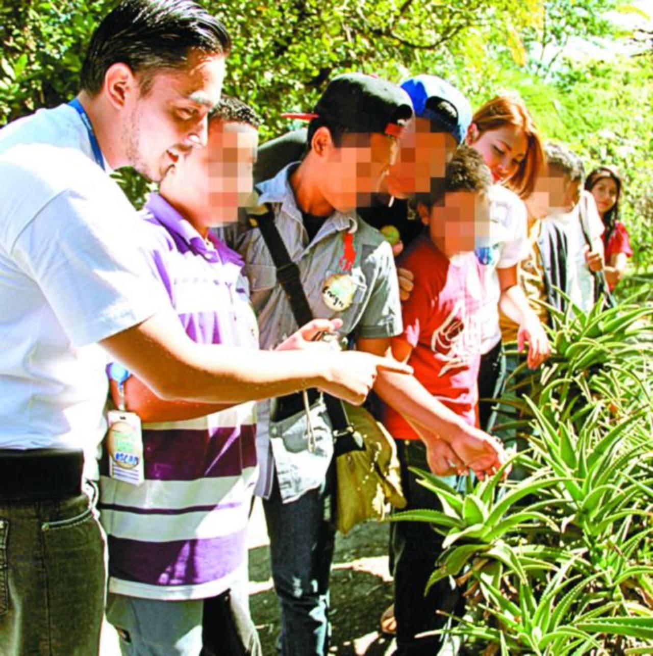Los estudiantes pudieron estar en contacto directo con la naturaleza en la visita al Jardín Botánico. Foto EDH / Mario Díaz