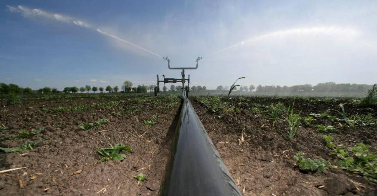 Los sistemas de riego permiten mejorar la producción agrícola. Foto EDH / Archivo