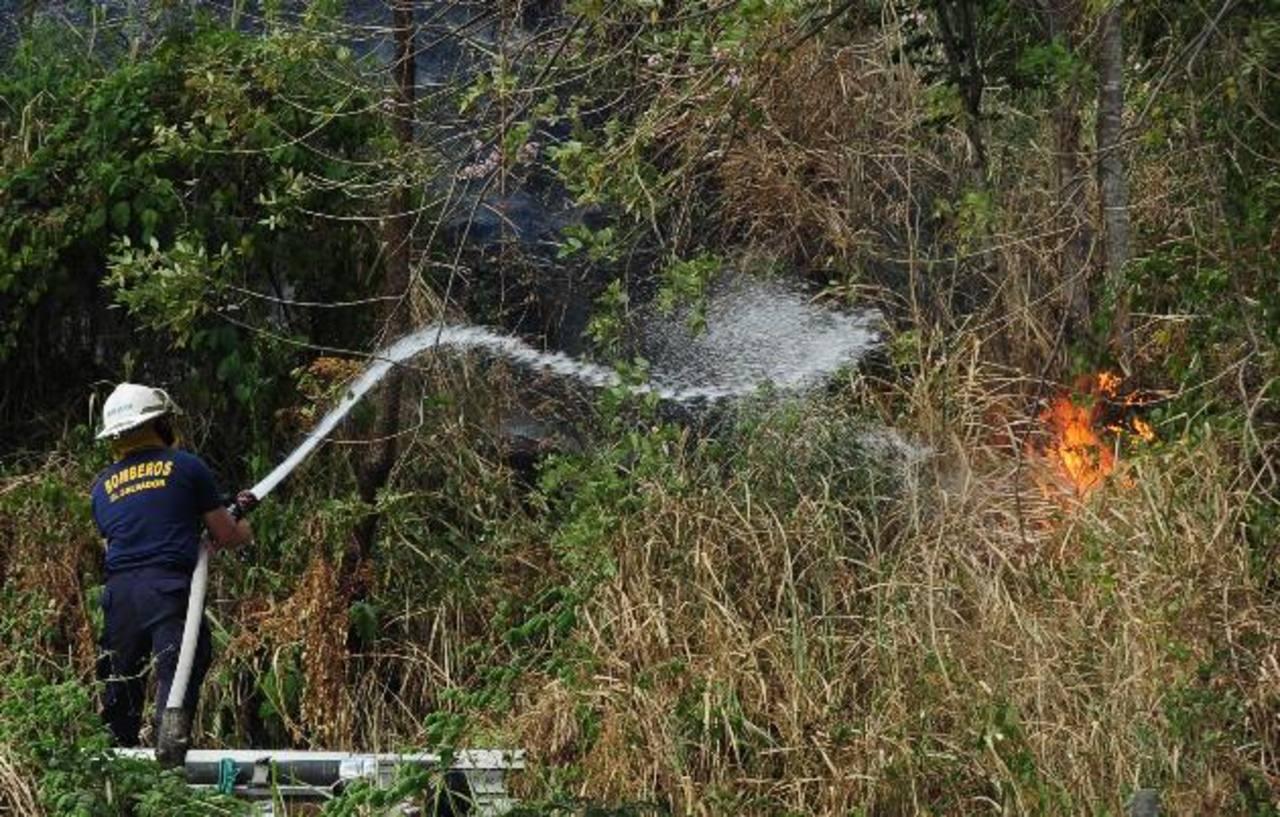 Productos pirotécnicos prohibidos generan incendios de maleza seca