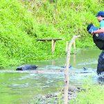 Un policía ayudó a un fiscal a cruzarse un río para ir a hacer la inspección de los seis cadáveres tras el enfrentamiento ocurrido el sábado.