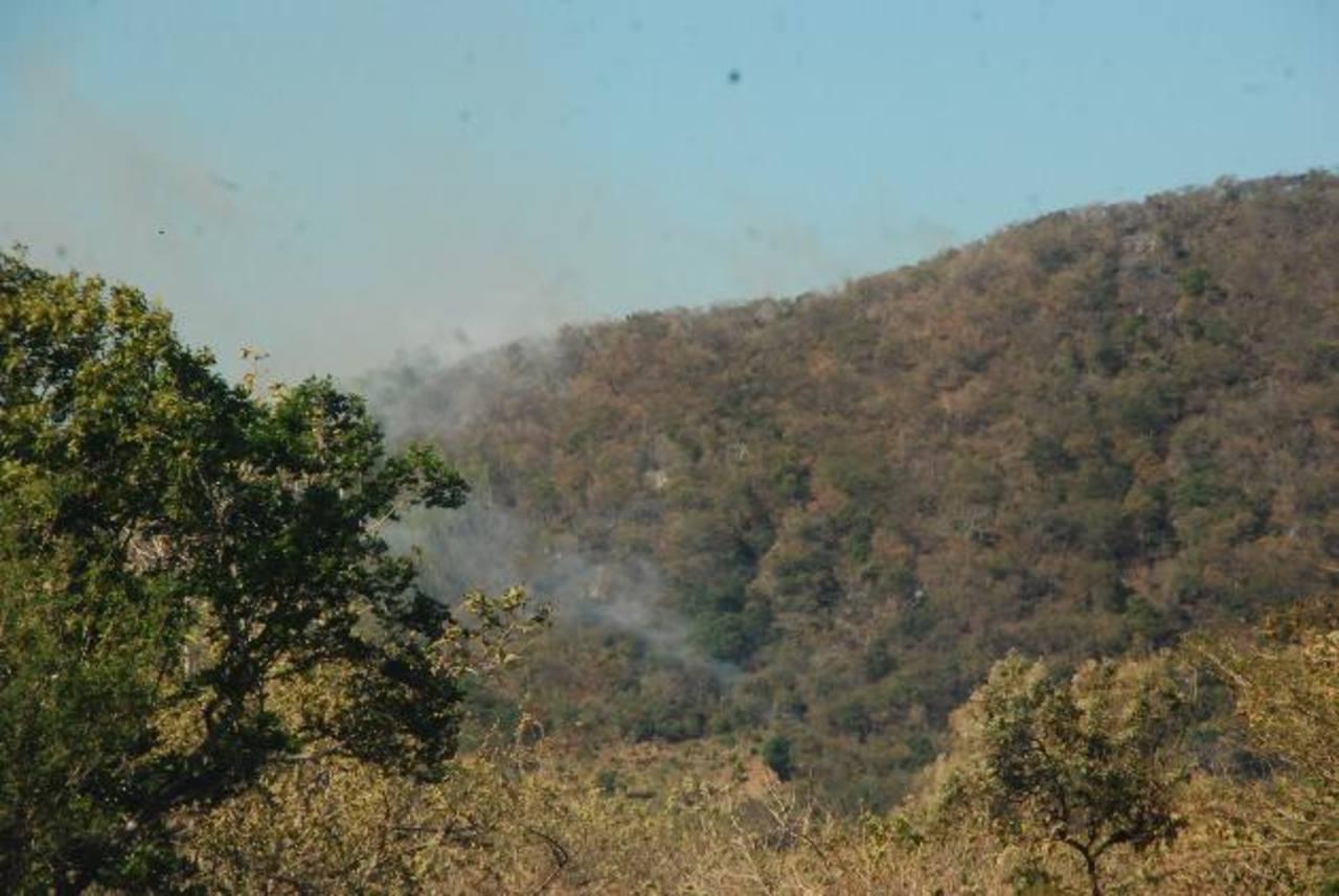 Los incendios forestales y en maleza han aumentado en este año. Foto EDH / insy mendoza