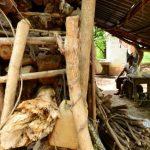 CEPAL: Reducción de pobreza se estanca en la región