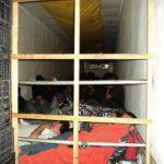 Detienen en México a cinco salvadoreños quienes viajaban ilegalmente a EE. UU.