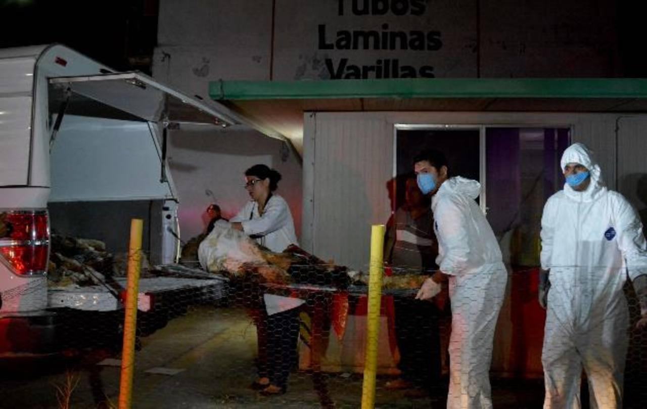 Policías ministeriales y expertos forenses retiran los cuerpos embalsamados en un crematorio en abandono en Acapulco.