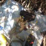Hallan armamento en un campamento clandestino en Usulután