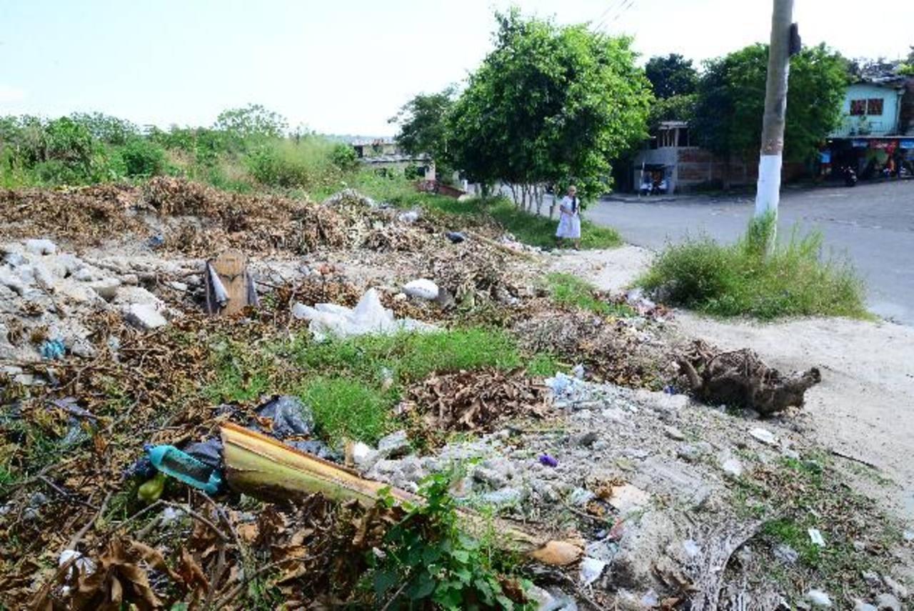 A la tierra y ripio que fue depositada con el proyecto Sitramss, se ha acumulado la que llevan vehículos particulares. Foto edh