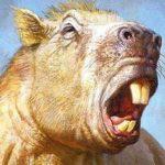 El roedor más grande del mundo tenía la mordedura de un tigre