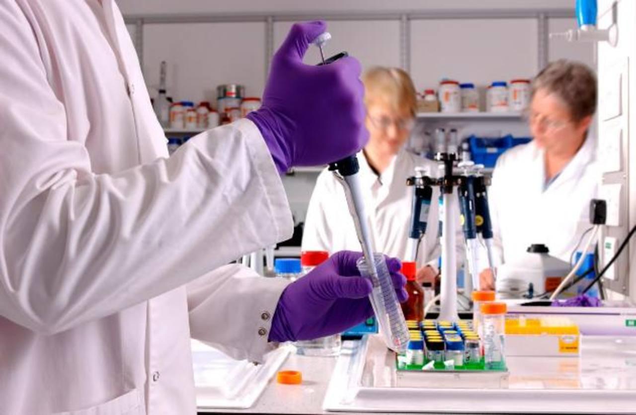 Los investigadores aún deben probar el antibiótico en humanos. foto EDH