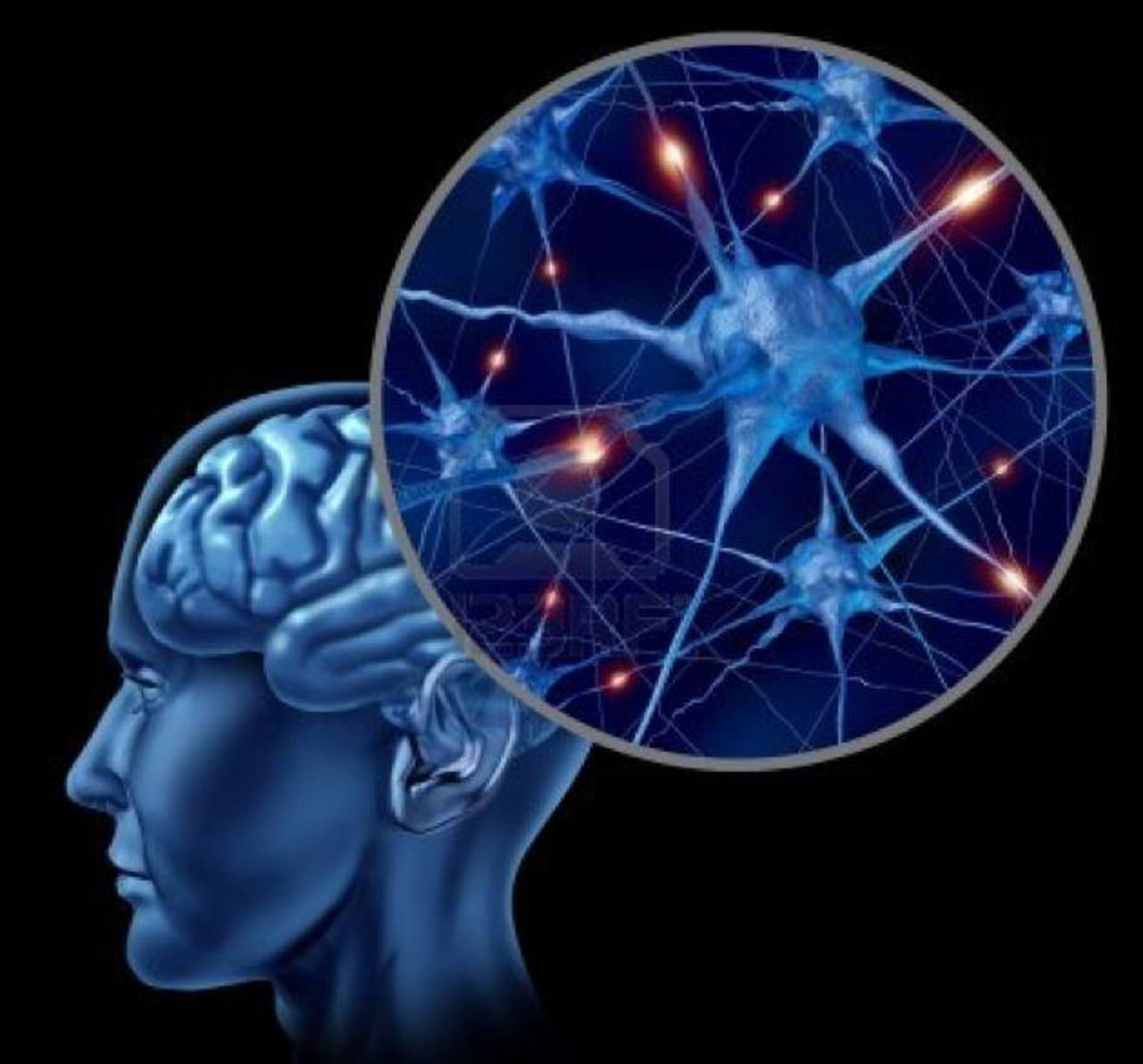 Los ataques los causa un exceso de descargas eléctricas repentinas en un grupo de células cerebrales. foto EDH
