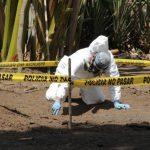 Encuentran dos cadáveres en Ciudad Arce