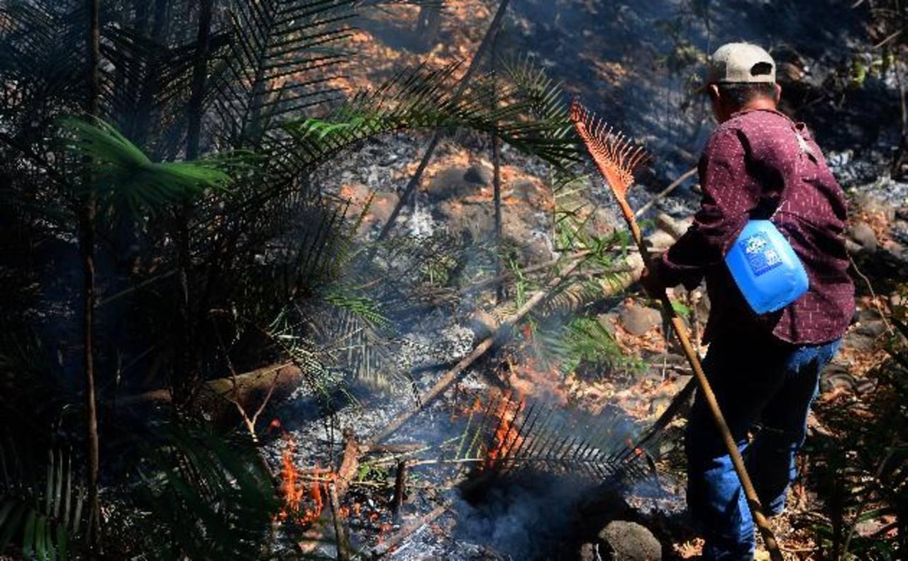 El incendio en el parque Walter Thilo Deininger fue reportado desde la mañana del 14 de febrero. Fotos EDH / Jaime anaya