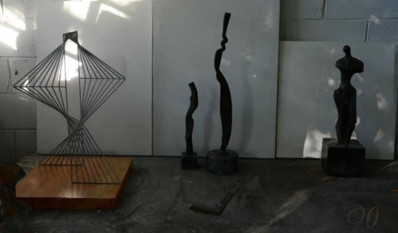La muestra presentará las 16 piezas en tres series diferentes que cautivarán al público. Foto EDH/Christian Camilo Achrury
