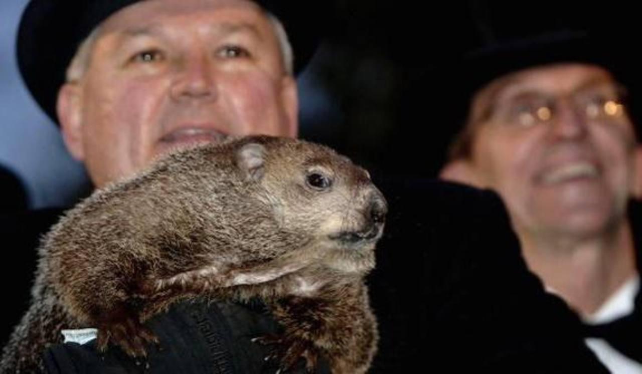 VIDEO: La marmota Phil pronostica 6 semanas más de invierno en EE.UU.