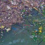 Anualmente se vierten 8 millones de toneladas de plástico al mar