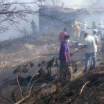 Bomberos, cuerpos de socorro y pobladores trabajaron en sofocar las llamas.