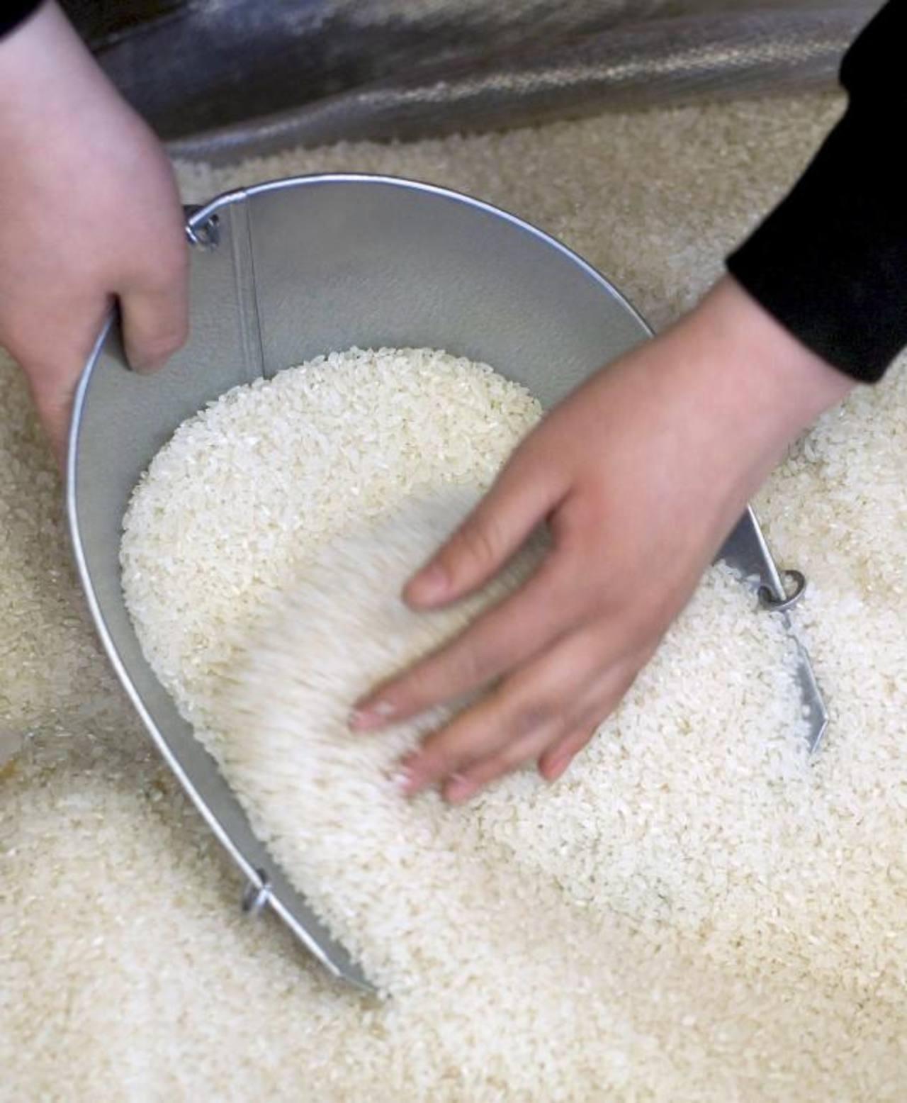 La importación de arroz será controlada por cuotas.