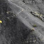 La recuperación de restos humanos continúa en la zona donde cayó el aparato