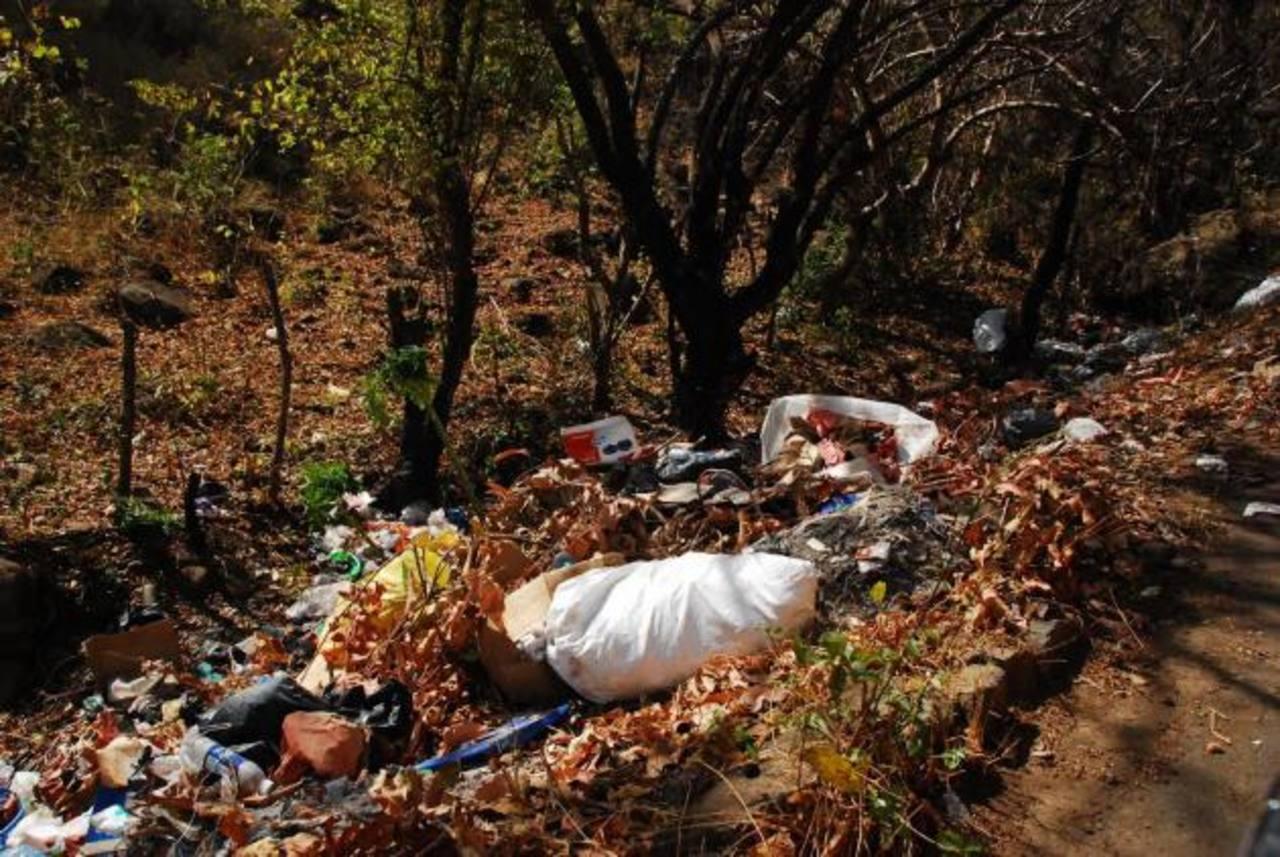 Aquí una muestra de los basureros a cielo abierto, en la calle al cantón Amapalita. foto edh / Insy Mendoza