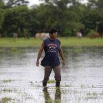 El Niño se asocia con condiciones de lluvia deficitarias. Foto EDH/