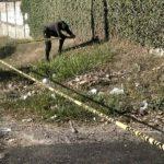 Asesinan estudiante en Cuscatlán por no ingresar a pandilla