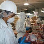 Se procesará carne con altos estándares de calidad.