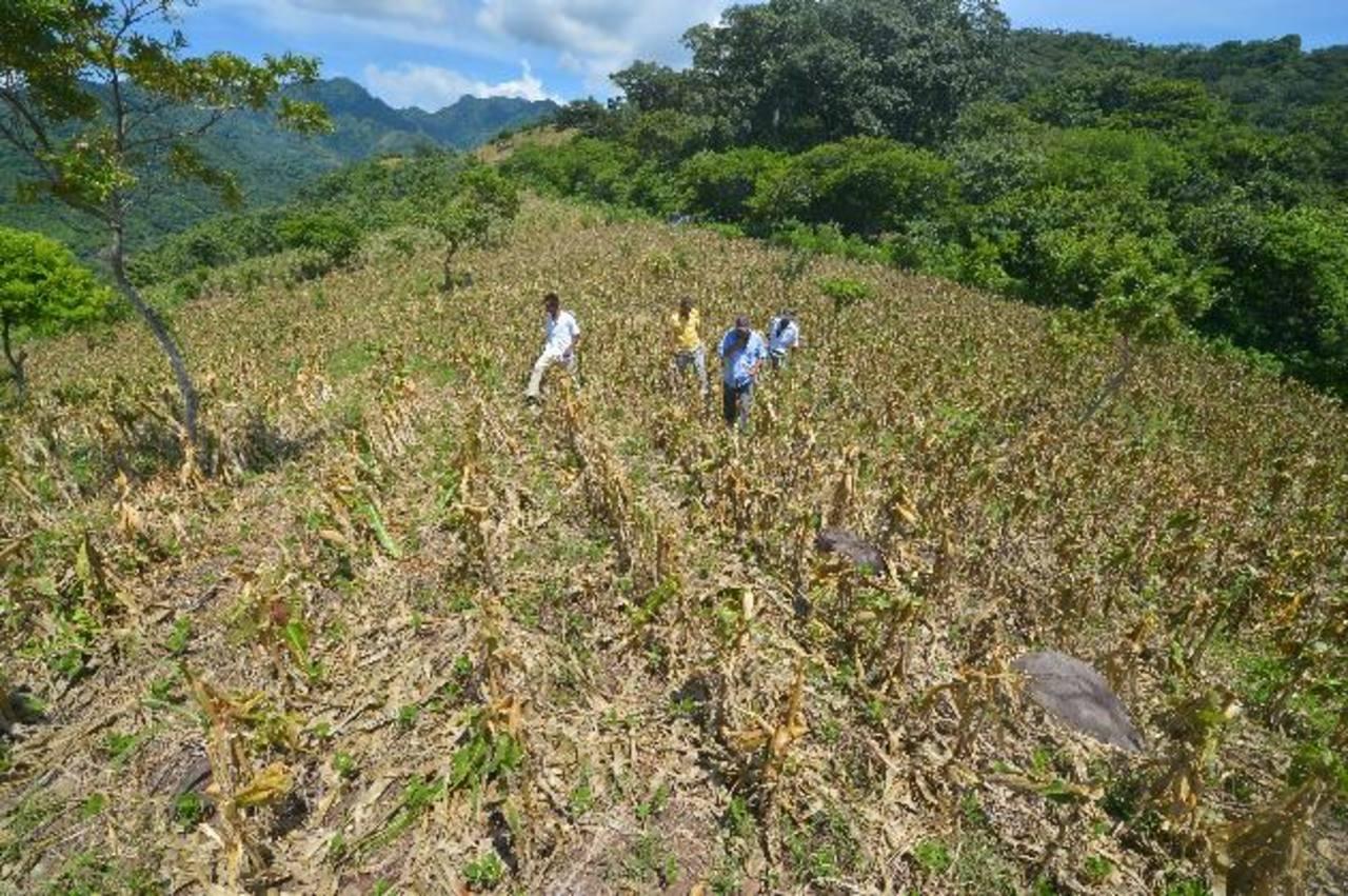 El fenómeno del Niño ha puesto en alarma a los Gobiernos de Centroamérica. foto edh / Archivo