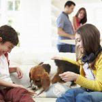 8 razones por las que todos deberíamos tener una mascota
