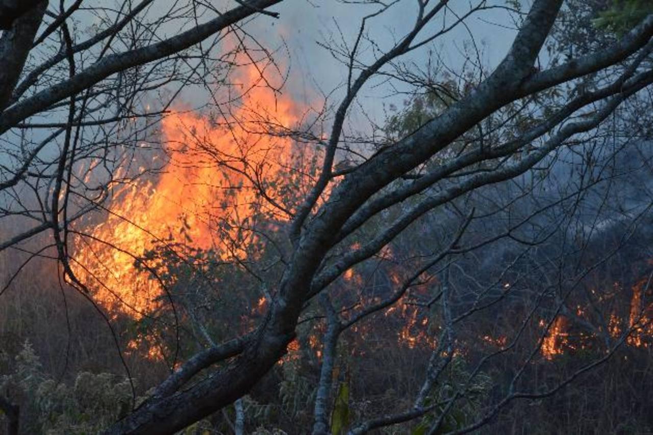 Uno de los incendios más graves ocurridos esta semana fue registrado en Alegría. Foto EDH / archivo