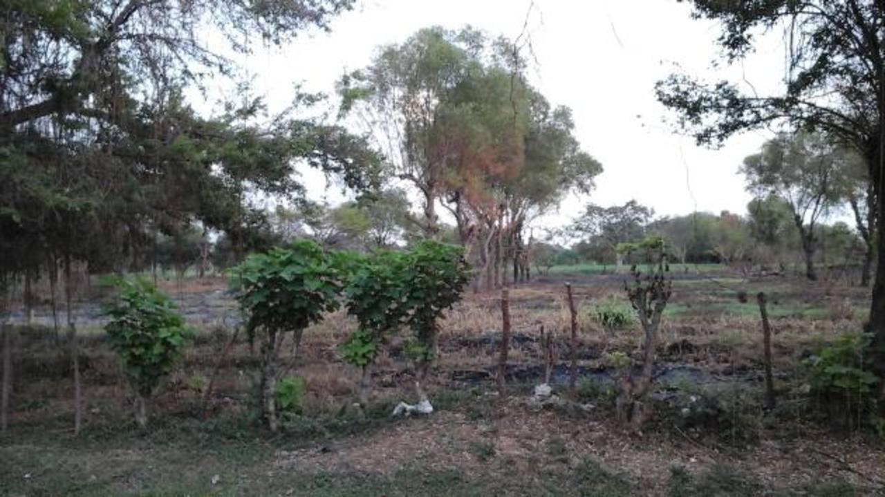 Al realizar las quemas, muchas veces el fuego se sale de control y afecta terrenos agrícolas aledaños, de lo cual nadie se hace responsable. foto edh