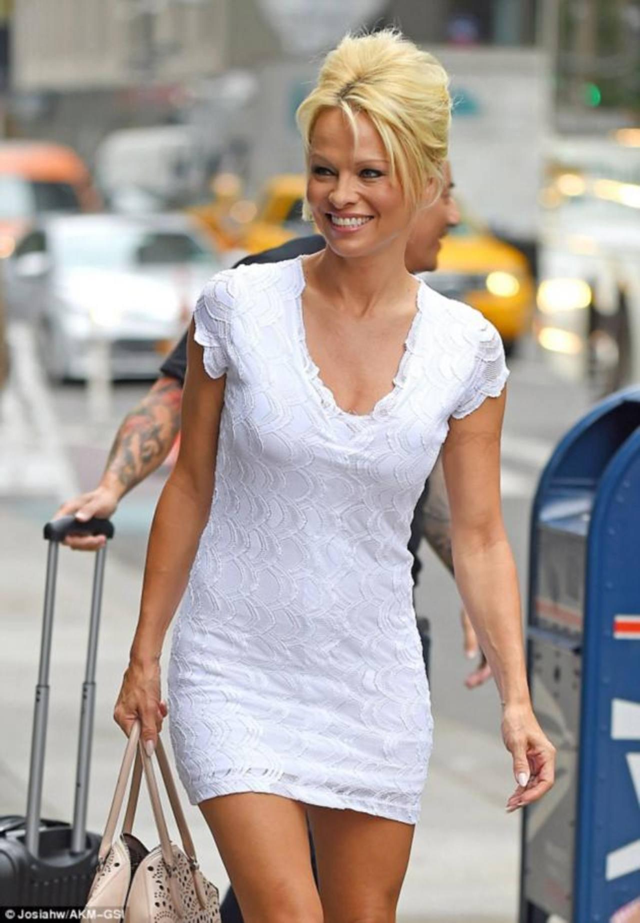 ¿Por qué estuvo en la cárcel Pamela Anderson?
