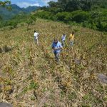 Advierten que situación agrícola puede tornarse más compleja