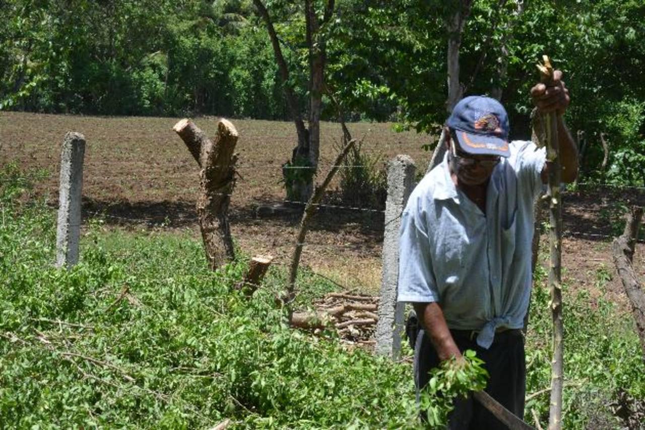 José Barahona aseguró que temen que la sequía se prolongue y no logren ni sembrar en la cosecha postrera, que es en la que tienen fe de recuperarse con sus cultivos. foto edh / carlos segovia