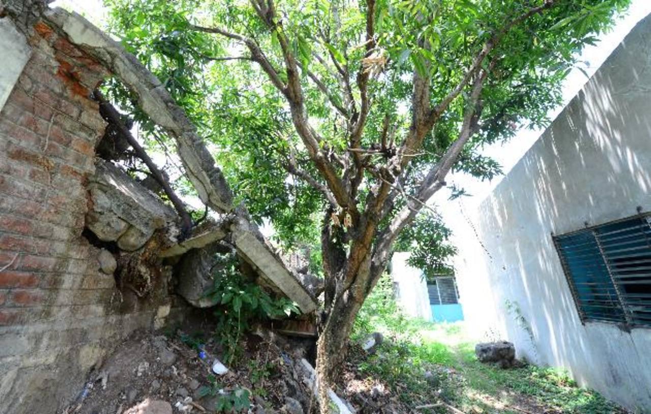 El muro que cubre una parte del hospital se encuentra dañado. Foto EDH / Mauricio Cáceres