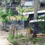 La comunidad está asentada en terreno estatal atrás de Ciudad Mujer de San Martín. Fotos EDH / Mauricio Cáceres