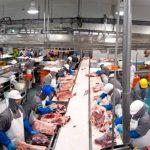 Mexicana Sukarne inaugura planta de ganadería en Nicaragua