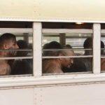 Pandilleros salvadoreños huyen hacia Nicaragua a través del Golfo de Fonseca