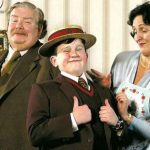 ¿Por qué Harry Potter era tan odiado por la familia Dursley?
