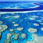 La Gran Barrera de Coral alberga unos 400 tipos de coral, 1,500 especies de peces y 4,000 variedades de moluscos. Comenzó a deteriorarse en 1990. foto EDH