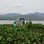 La barcaza está en mal estado ante la falta de piezas, según los vecinos, quienes piden a Medio Ambiente que tome cartas en el asunto y apoye con la limpieza de ninfa. foto edh / insy mendoza