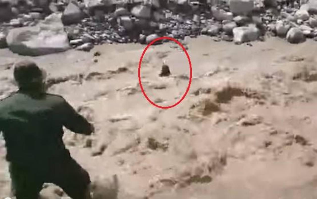 VIDEO: Policía de Colombia rescata a perro de morir ahogado