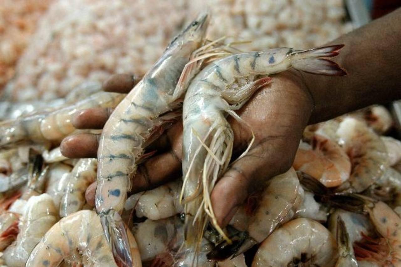 La venta del producto marino ha crecido este año.