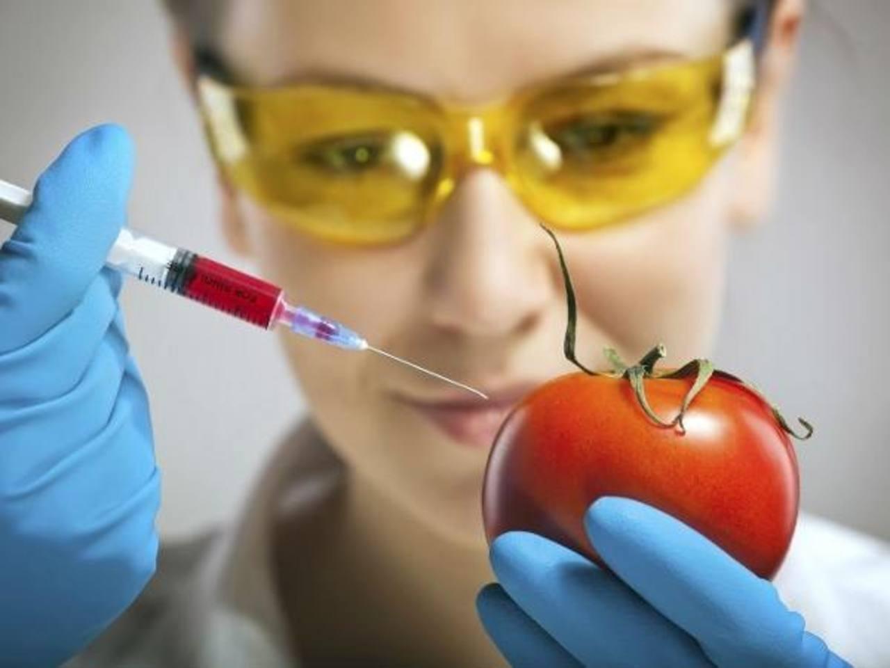 """La aplicación se llama """"Detective OMG"""" (por organismos modificados genéticamente). foto EDH"""