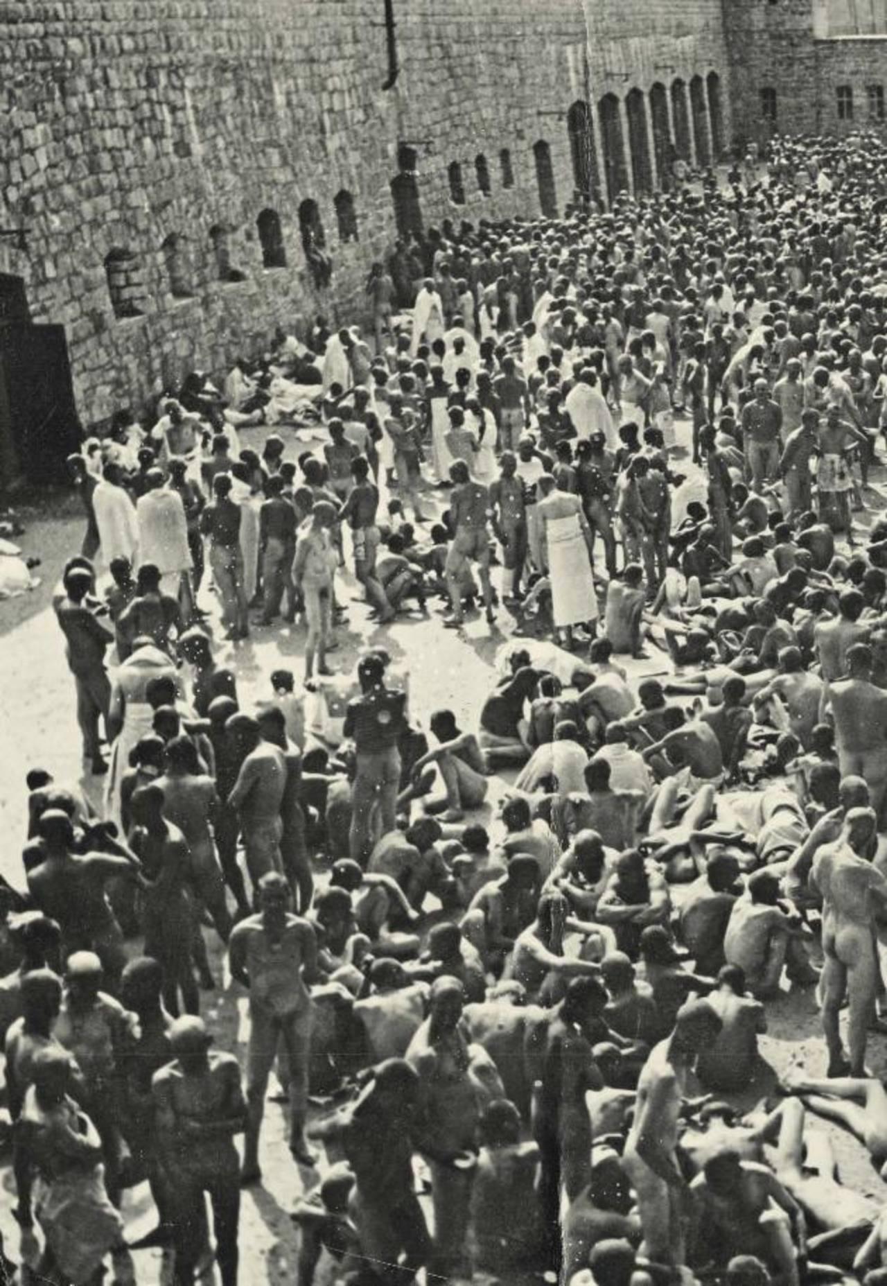 El mundo celebra los 70 años de la derrota nazi